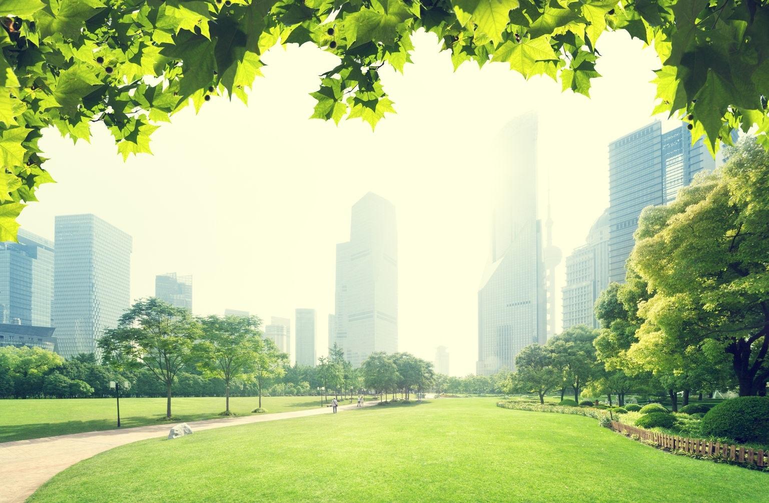 Conozca los beneficios de la Gestión ambiental